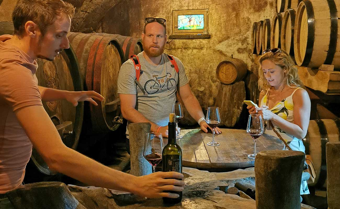 wine tour vipava valley