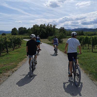 Vipava Valley e-bike tour